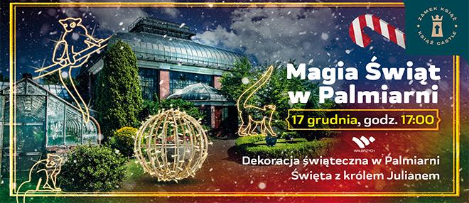 Magia Świąt w Palmiarni